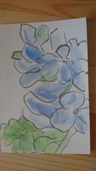 絵手紙紫陽花