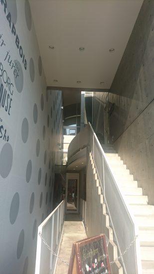 安藤忠雄さんのビルの階段