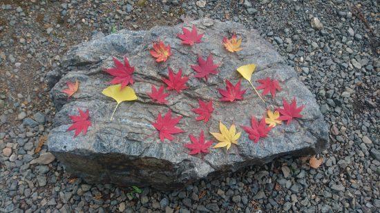 石道寺石の上の紅葉